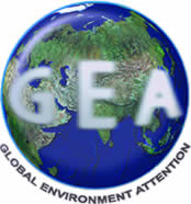 Gea: Global Einvironment Attention